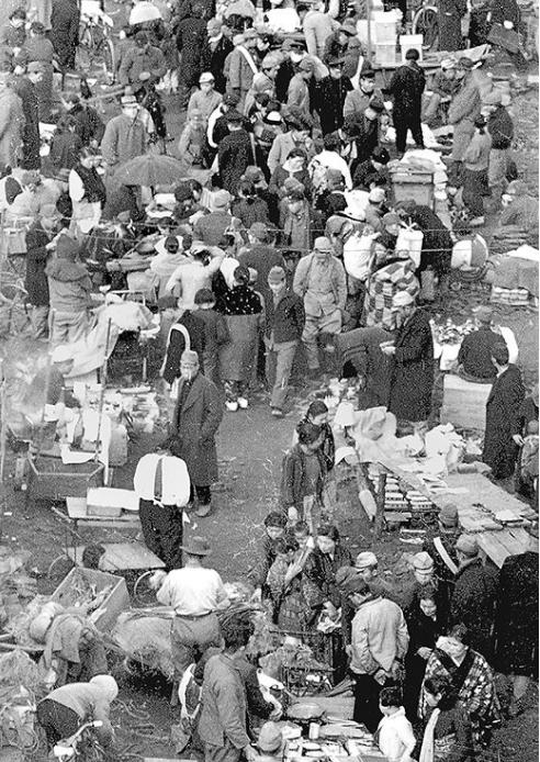 広島市猿猴橋町194602
