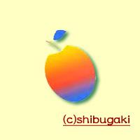 shibugaki-squar.jpg