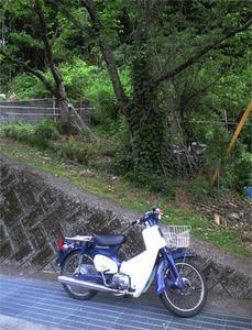 honda-cab.jpg